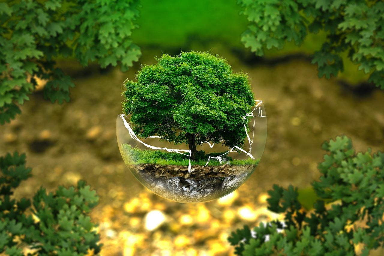 Menyembuhkan Bumi